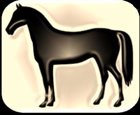 """תערובות לסוסים בשקים של 40-50 ק""""ג"""